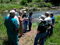 Fish Ecology at the Blue River Ranch